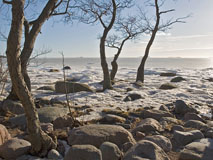 Lauttasaari beach in Helsinki in a late winter day - Last view 2021-02-24