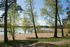 A beach aside an inner cove of the sea in Suvisaaristo, Espoo - Last view 2021-02-24