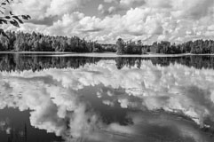 A B&W photo of lake Kyynärä in Liesjärvi National Park - Last view 2021-02-24