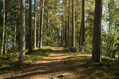 The walking trail  in Liesjärvi National Park. Lakes on both sides of the narrow rigde. - Last view 2021-02-24