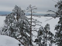 A view over Espoo bay in an overcast January day - Last view 2021-02-24