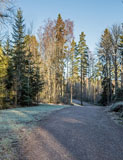 A recreation path in Latokaski. In winter a popular skiing track goes along it. - Last view 2021-02-24