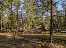This is an entrance to the forest area north of Latokaski village - Last view 2021-02-24