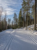 This skiing track did not last long this winter - Last view 2021-02-24