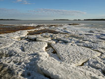 Ice sheets on rocks - Last view 2021-02-24