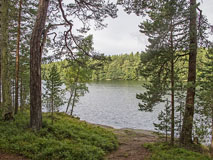 Pentala lake is a small lake in the middle of Pentala island - Last view 2021-02-24