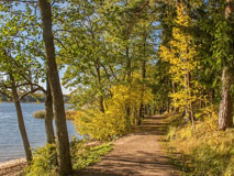 A path along Laurinlahti beach towards Tyrskyvuori hill (Espoo Waterfront Walkway - Rantaraitti) - Last view 2021-02-24