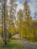 A walk in autumnal Soukka village - Last view 2021-02-24