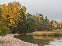 Autumn in Klobben beach, Espoo - Last view 2021-02-24