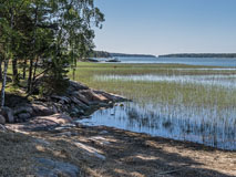 Summer morning in Makkarlahti bay  - Last view 2021-02-24